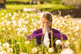 Allergia Stagionale cos'è