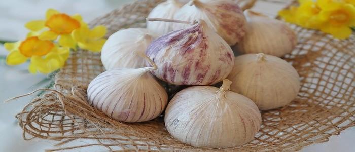 aglio-come-afrodisiaco