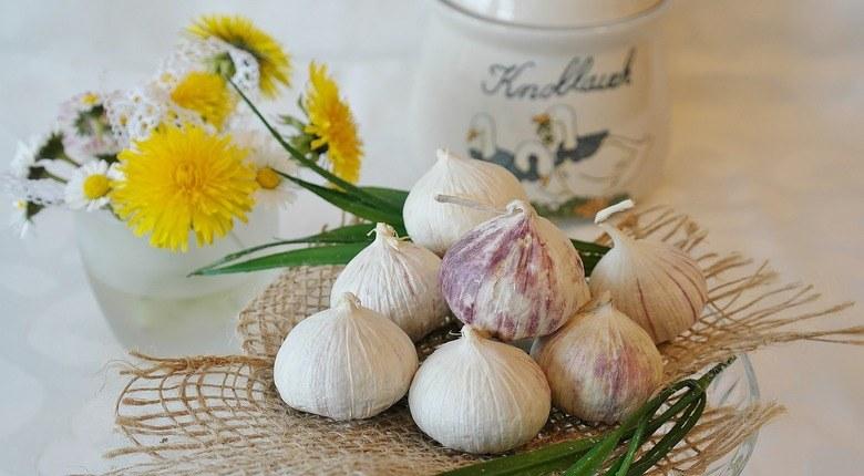 aglio-pianta-medicinale