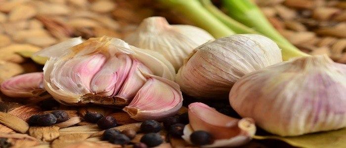 concimazione-aglio